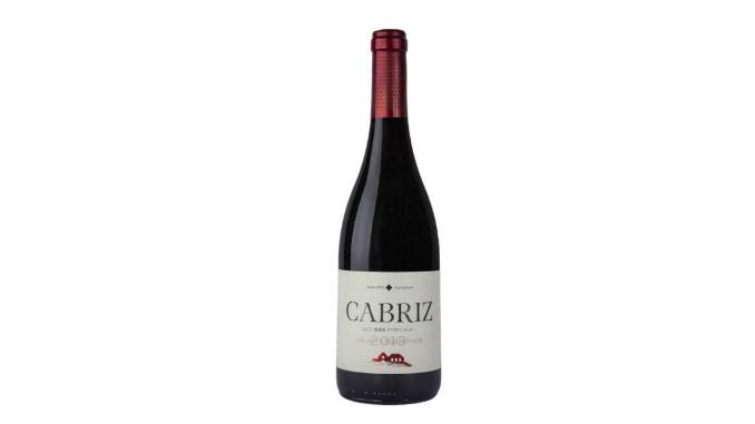 vinho1-1200x627
