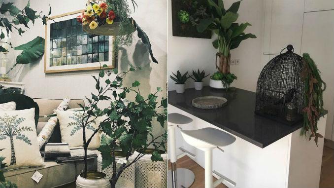 Fikus, a empresa que é especialista em design de interiores, lifestyle e consultoria