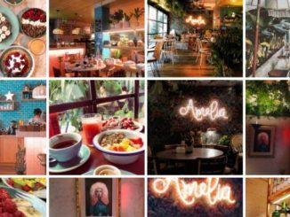 Amélia é a nova estrela do Instagram e estas 25 fotos provam isso